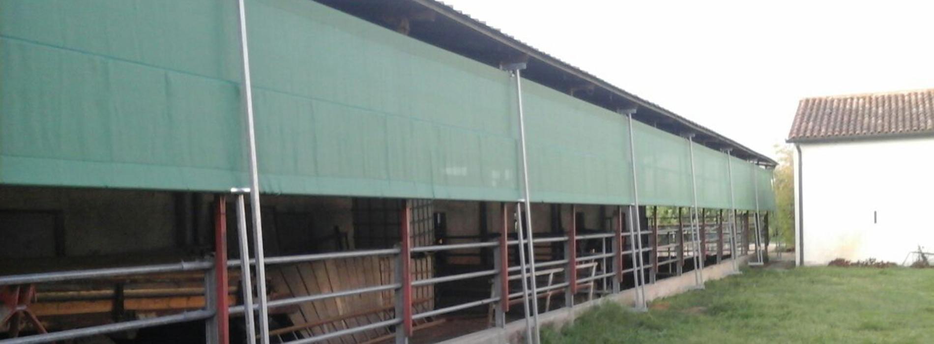 reti frangivento e ombreggianti per stalle